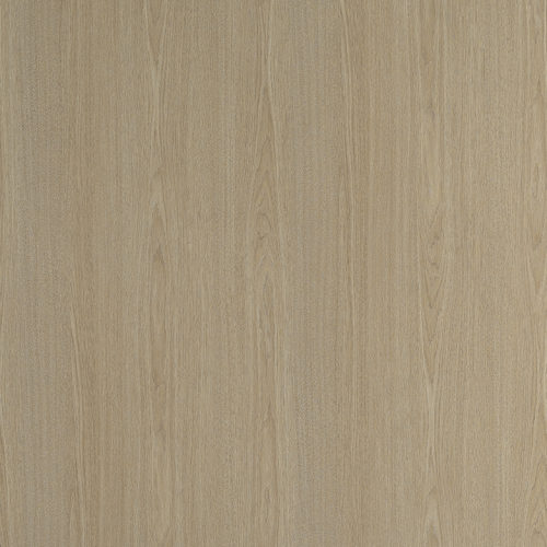 0369-Vicuna-Graceful-Oak