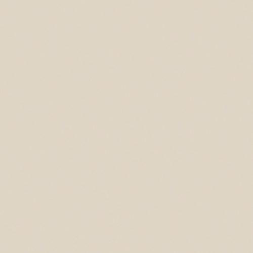 พื้นผิวและวัสดุ 0858 Pumice