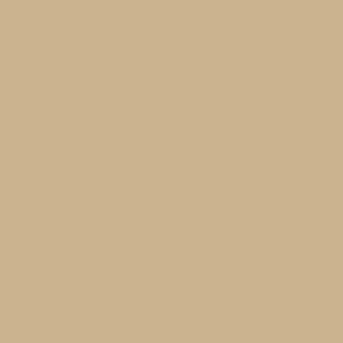 พื้นผิวและวัสดุ 0958-Beige