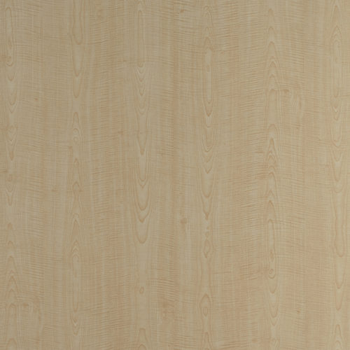 1143-French-Sycamore