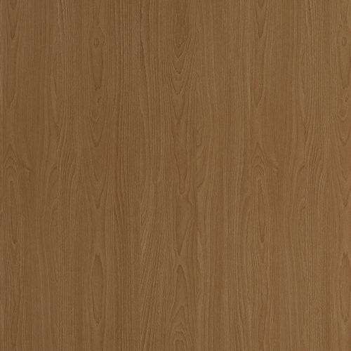 2567-Copper-Beech-New