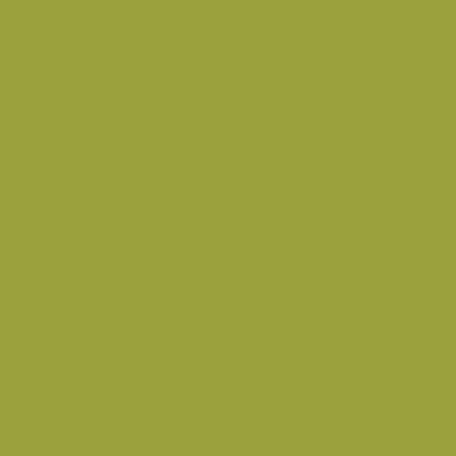 พื้นผิวและวัสดุ 3007-Pale-Olive