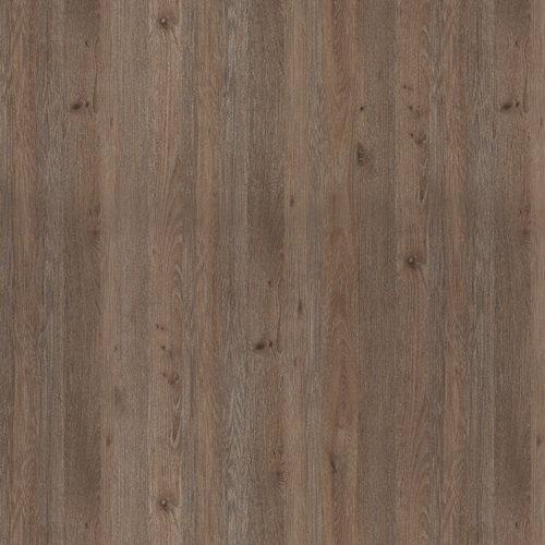 6437-Chalked-Knotty-Ash