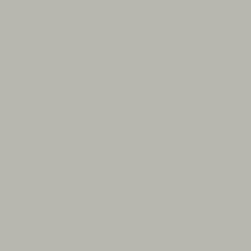 พื้นผิวและวัสดุ 7905-Silver