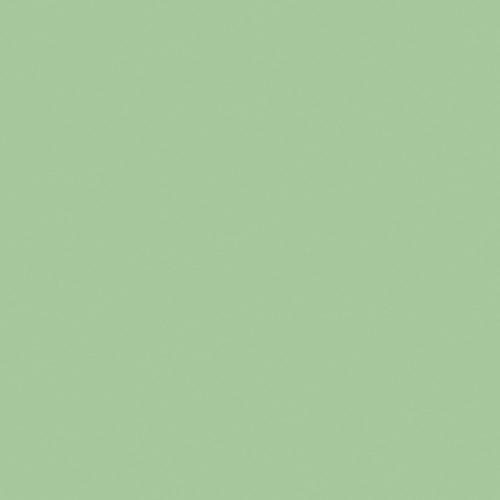 8794-Enamel