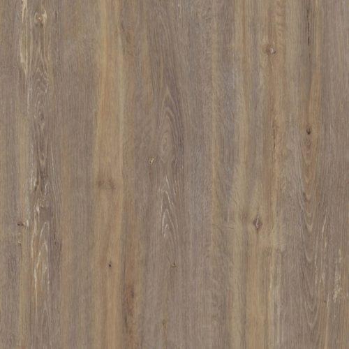 พื้นผิวและวัสดุ Amberg Oak 4426-WM